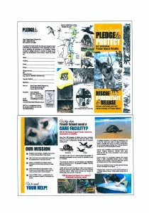 Brochure in Jpeg